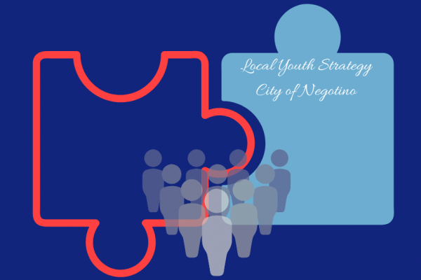 Local Youth Strategy for the City of Negotino